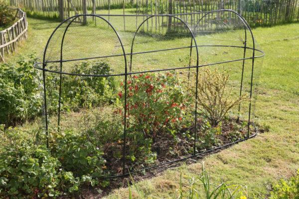 haxnicks long fruit cage