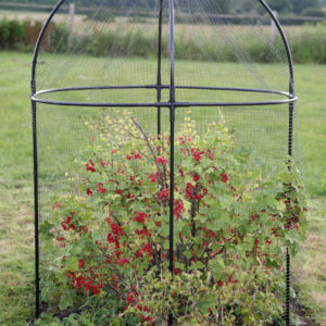 haxnicks round fruit cage