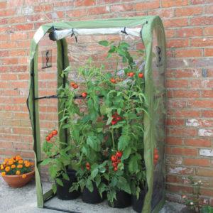 haxnicks tomato crop booster frame