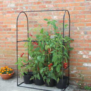 haxnicks tomato crop booster frame