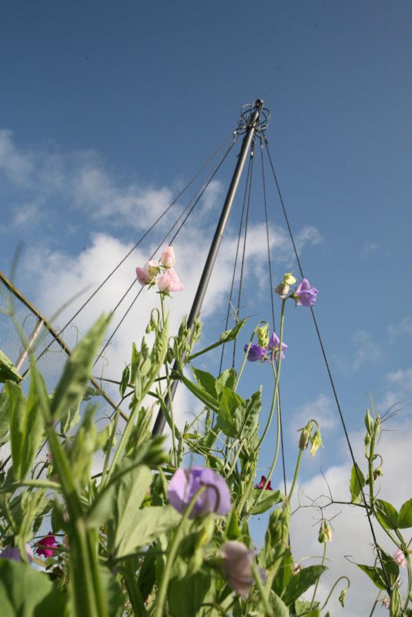 haxnicks garden maypole